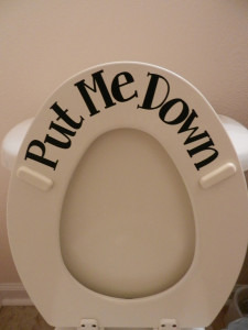 put the toilet seat down